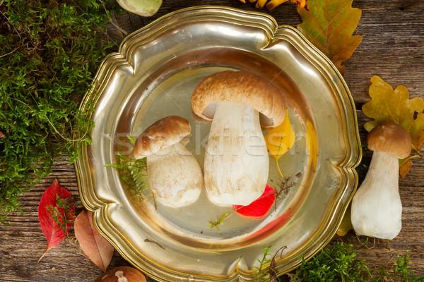 Boletus funghi tin piatto tavolo in legno legno Foto d'archivio © neirfy