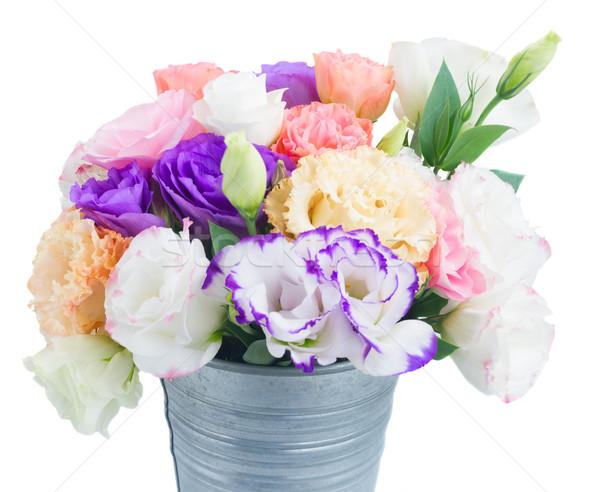 Rózsaszín fehér ibolya virágok fém edény Stock fotó © neirfy