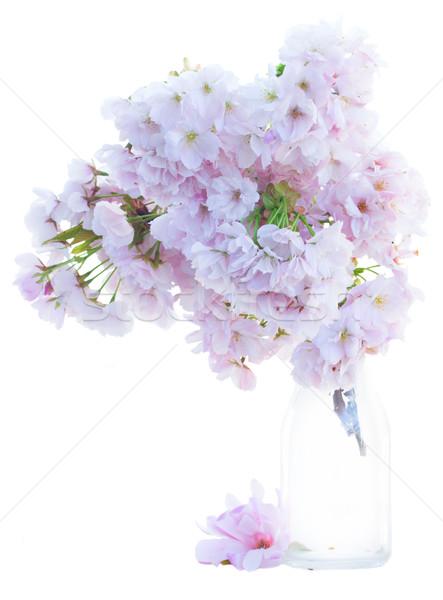 Ramoscello rosa fiori di primavera bouquet vetro vaso Foto d'archivio © neirfy