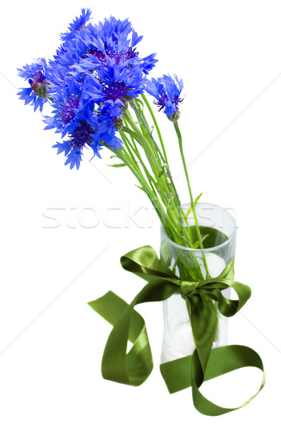 blue corn flowers bouquet in vase Stock photo © neirfy