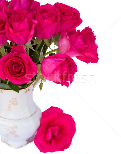 Mályvaszínű rózsák közelkép izolált fehér esküvő Stock fotó © neirfy