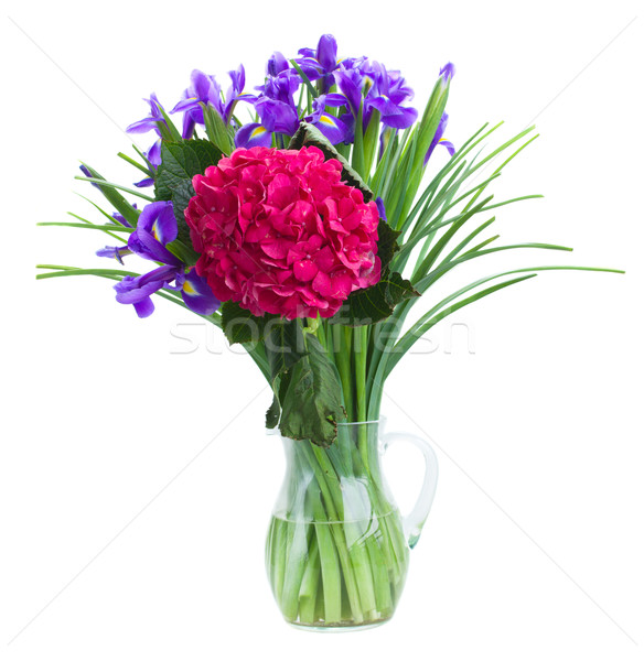 hortensia and iris flowers bouquet Stock photo © neirfy