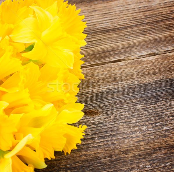 Narcissen houten vers voorjaar Geel Stockfoto © neirfy