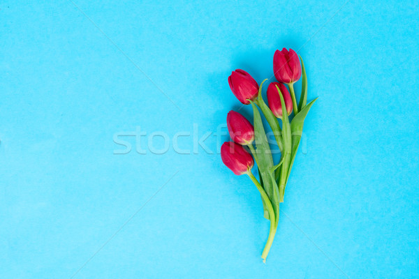 posy of tulips Stock photo © neirfy