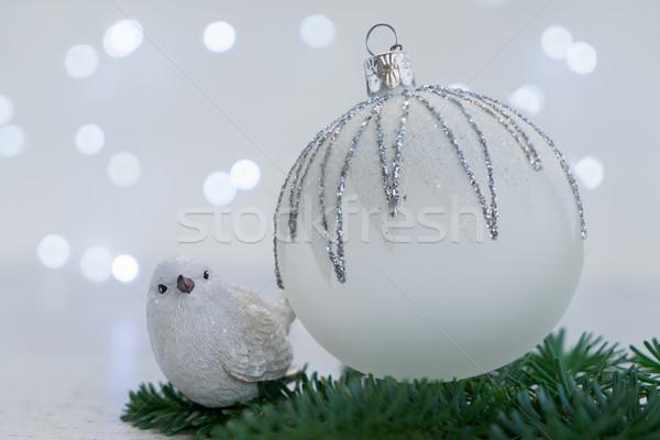 Stok fotoğraf: Beyaz · Noel · kar · kış · sahne · kuş