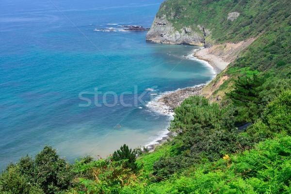 İspanya güzel deniz sahil doğa plaj Stok fotoğraf © neirfy