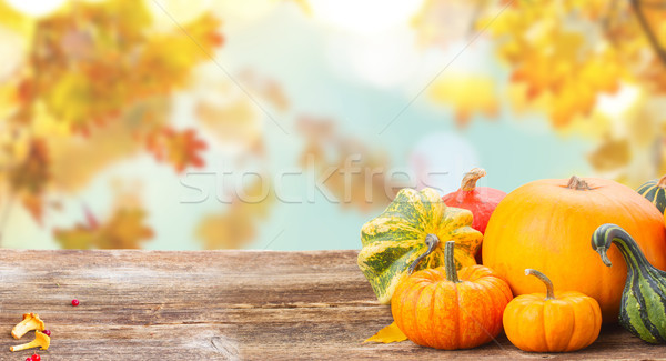 Citrouille table orange brut Photo stock © neirfy