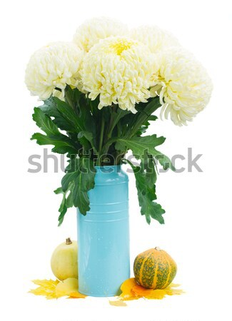 Stock photo: jar with cream and camomile