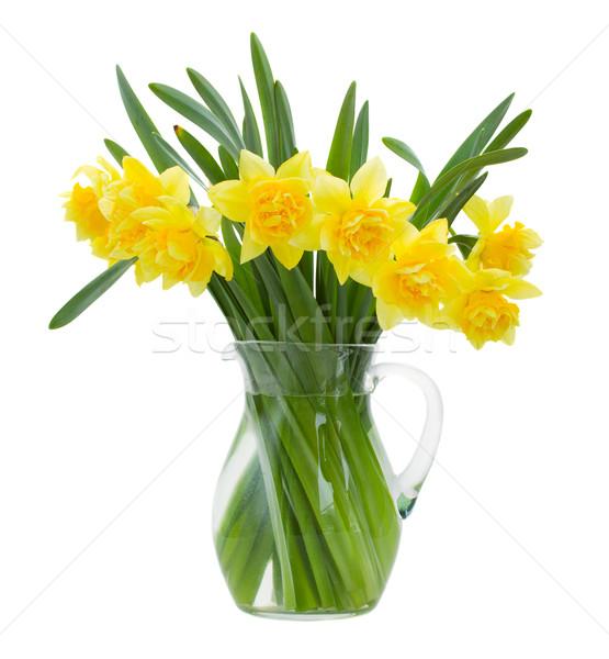 нарциссов ваза изолированный белый фон Сток-фото © neirfy