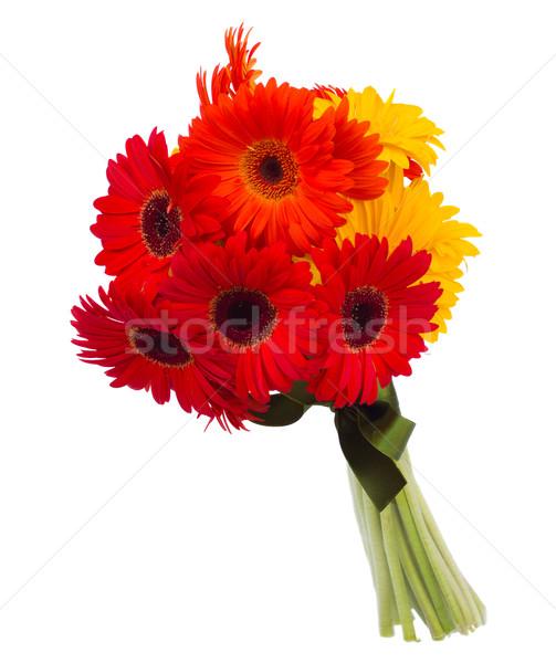 gerbera flowers bouquet Stock photo © neirfy