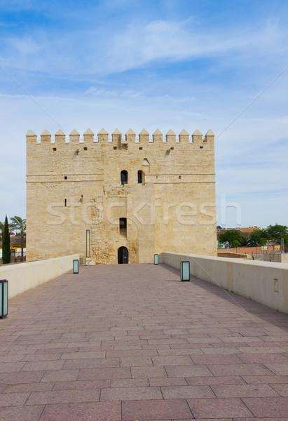 Torre Calahorra and roman bridge, Cordoba Stock photo © neirfy