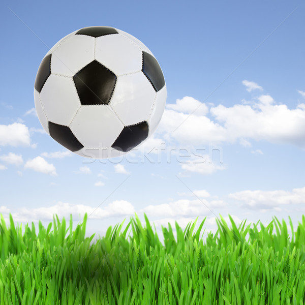 soccer ball over grass Stock photo © neirfy