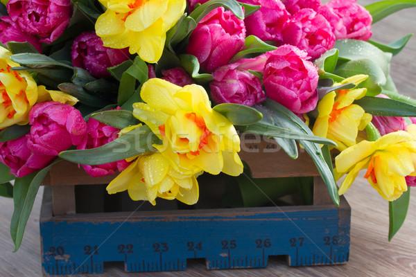Wiosennych kwiatów skrzynia wiosną tulipany narcyz Zdjęcia stock © neirfy