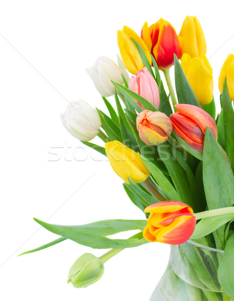 Bouquet tulipe fleurs blanche pot Photo stock © neirfy
