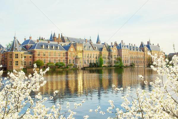голландский парламент утра мнение весны день Сток-фото © neirfy