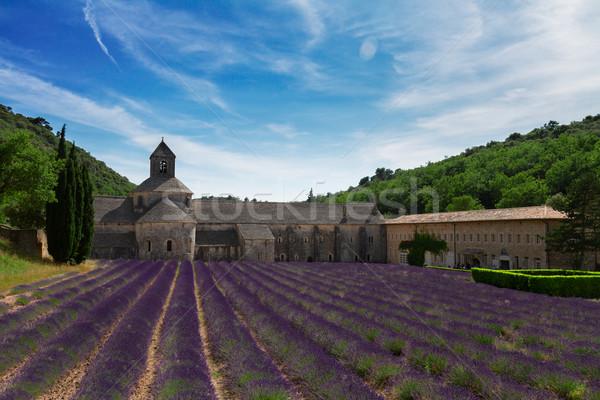 Abdij lavendel veld Frankrijk wereld beroemd Stockfoto © neirfy