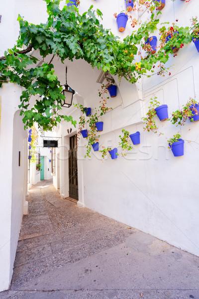 Poble Espanyol, Barcelona Stock photo © neirfy