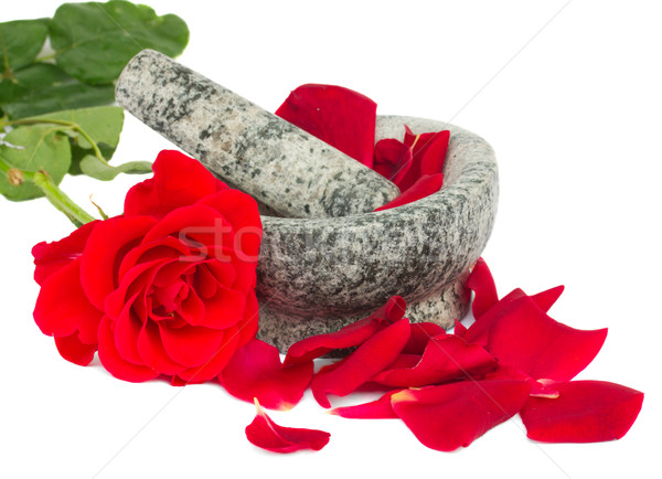 Mortar with rose  and petals Stock photo © neirfy