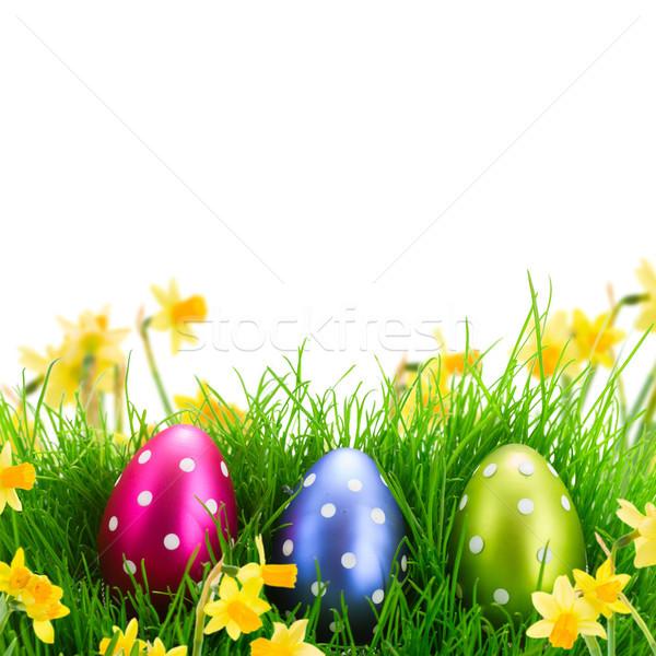Сток-фото: пасхальных · яиц · трава · дерево · зеленая · трава · весны · саду