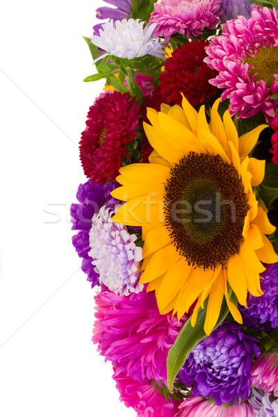autumn flowers Stock photo © neirfy