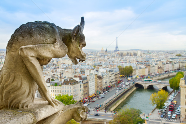 Gargoyle of  Paris Stock photo © neirfy