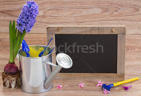 Set of gardening tools with black board Stock photo © neirfy