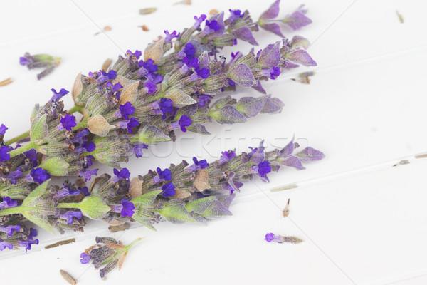 Lavanta çiçekler spa taze beyaz Stok fotoğraf © neirfy