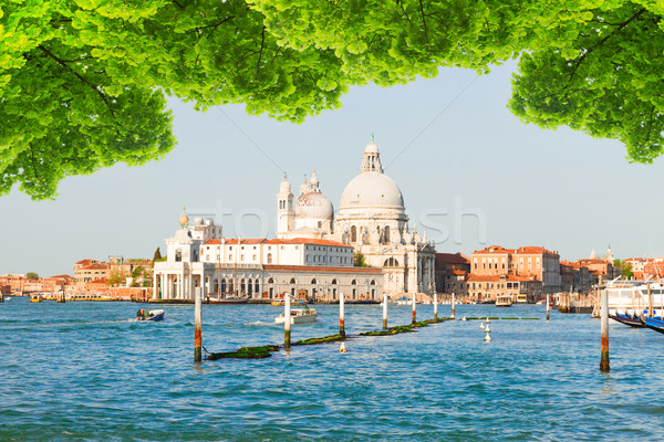 Bazilika Venedik İtalya kanal su Stok fotoğraf © neirfy