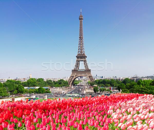 Eiffel wieża Cityscape panoramę wiosną Zdjęcia stock © neirfy