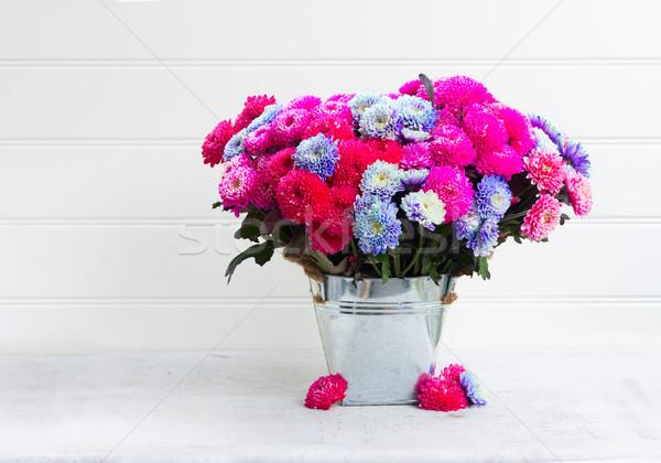 ősz krizantém virágok virágcsokor rózsaszín kék Stock fotó © neirfy