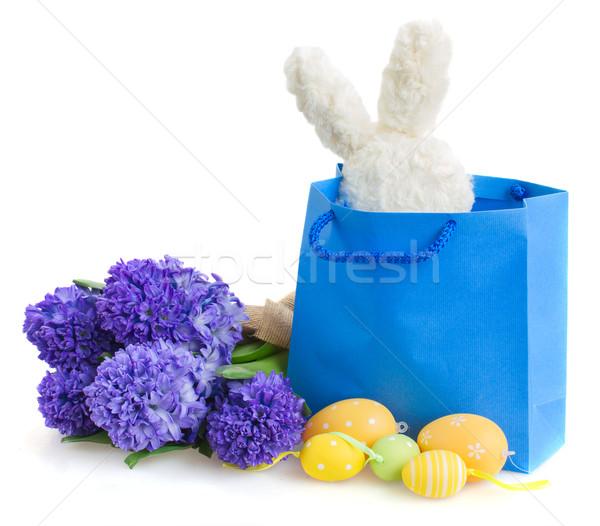 Mavi sümbül çiçekler paskalya yumurtası tavşan hediye Stok fotoğraf © neirfy