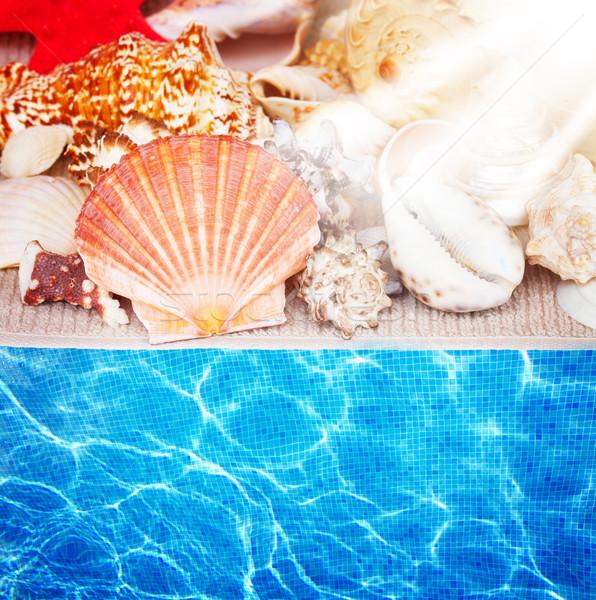 seashells border and pool water Stock photo © neirfy