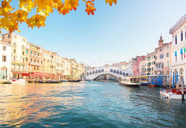 Köprü Venedik İtalya görmek yaz gün Stok fotoğraf © neirfy