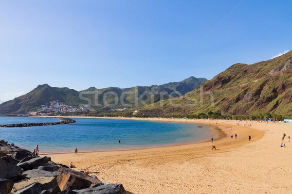 Strand tenerife Spanje eiland water boom Stockfoto © neirfy