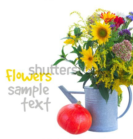 posy of fall autumn flowers Stock photo © neirfy