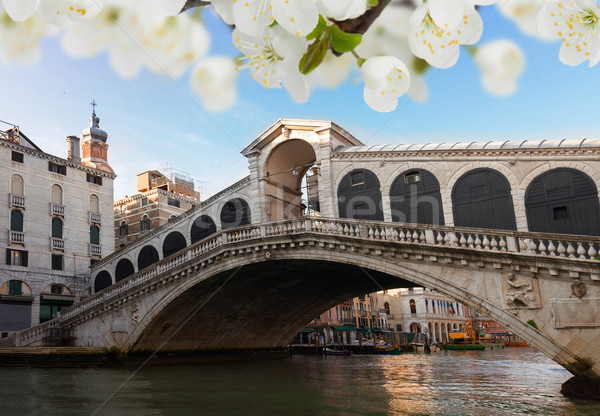 Photo stock: Pont · Venise · Italie · vue · printemps · fleurs