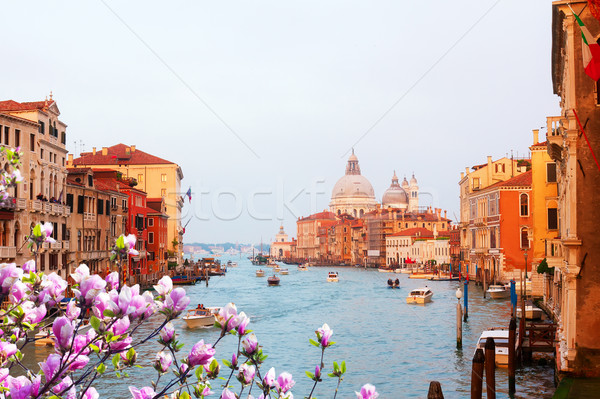 Grand canal, Venice, Italy Stock photo © neirfy