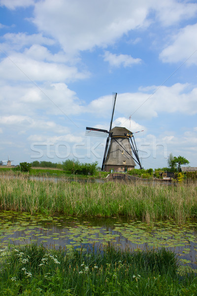 dutch windmill Stock photo © neirfy