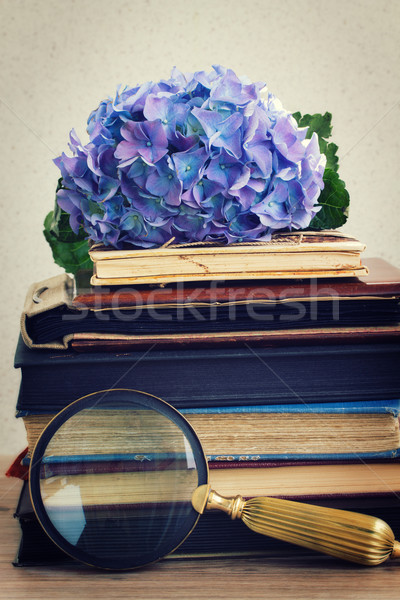 pile of old books with flowers and looking glass Stock photo © neirfy