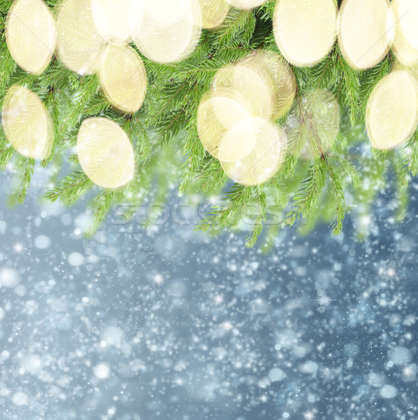 with fir tree and snow Stock photo © neirfy