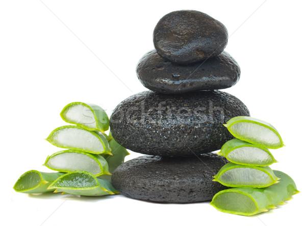 массаж камней алоэ черный изолированный белый Сток-фото © neirfy