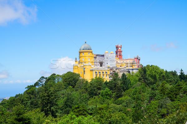 Portugal coloré parc été jour bâtiment Photo stock © neirfy