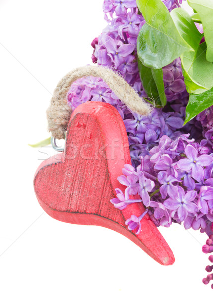 lilac fresh flowers with red heart  Stock photo © neirfy