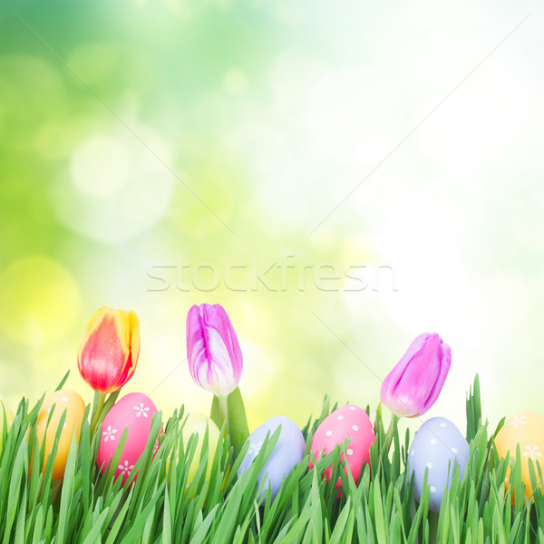 Easter eggs in grass Stock photo © neirfy