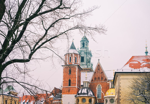 Colline cracovie Pologne royal basilique hiver Photo stock © neirfy