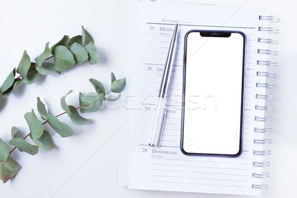 Ev ofis büro telefon gümüş yeşil modern Stok fotoğraf © neirfy