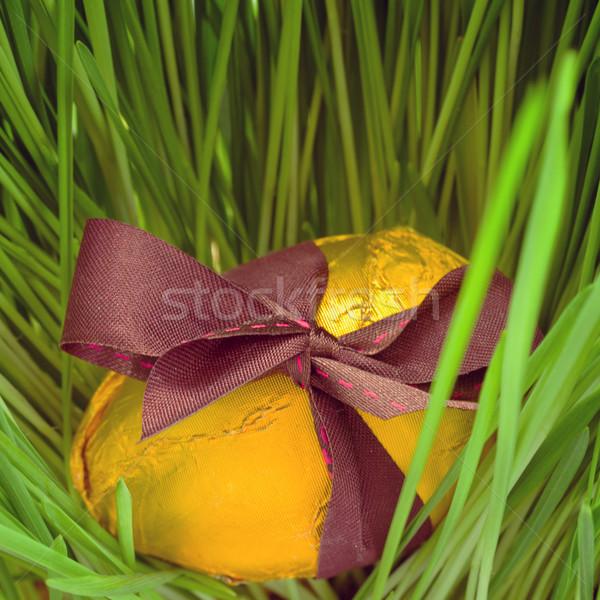 Złote jajka trawy złoty easter egg łuk długo Zdjęcia stock © neirfy