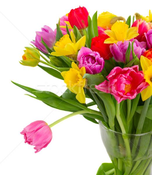 花束 チューリップ 水仙 新鮮な ピンク 紫色 ストックフォト © neirfy