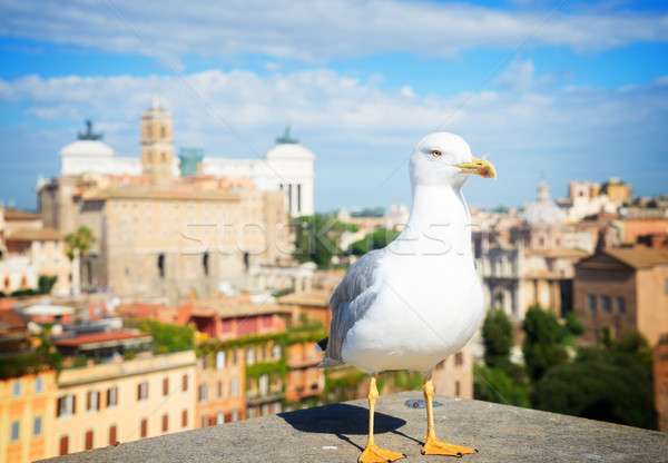 Forum romaine ruines Rome Italie Skyline Photo stock © neirfy