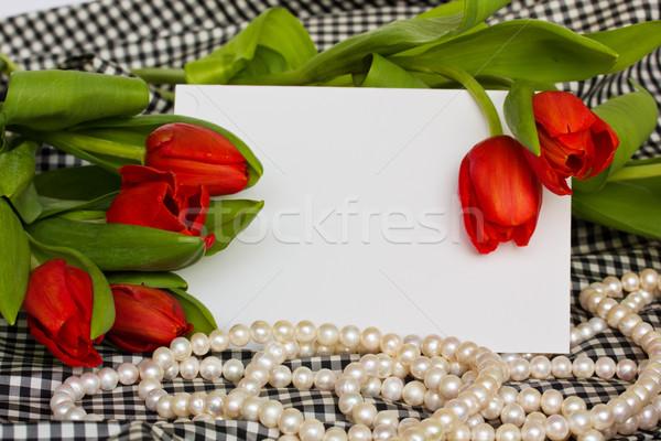 Kırmızı lale inciler boş kart çiçek düğün Stok fotoğraf © neirfy